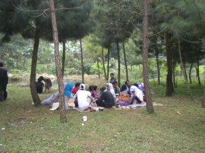 Makan Di Bawah Pohon Pinus